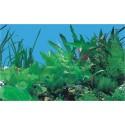 Фон для аквариума двухсторонний высота 40 см