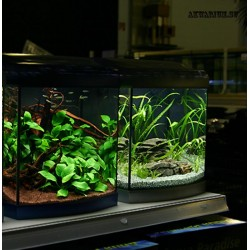Разовый выезд специалиста аквариум до 200 л