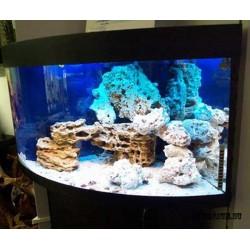 Разовый выезд специалиста аквариум от 200 до 500 л