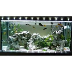 Разовый выезд специалиста аквариум от 500 л