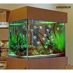 Абонентское обслуживание аквариума от 200 до 500 литров