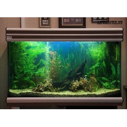 Абонентское обслуживание аквариума до 200 литров