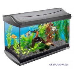Аквариум AquaArt Discover Line 60л