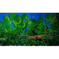 Фон для аквариума двухсторонний высота 30 см