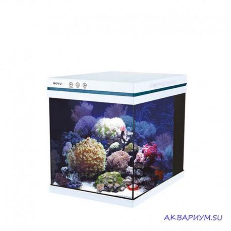 Аквариум море/пресный