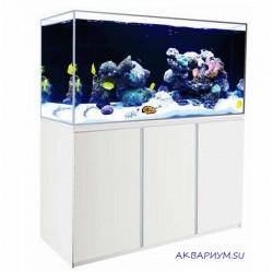 Аквариум 380 л морской