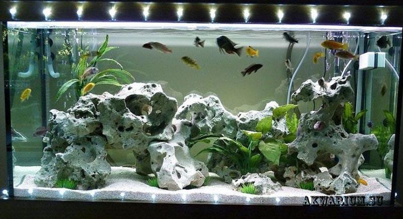 Декорации в аквариуме